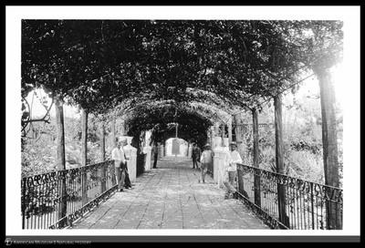 The Plaza, Trinidad, Cuba, 1892