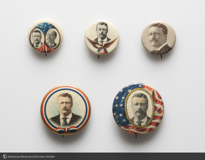 CC_TR_Campaign_buttons2.jpg