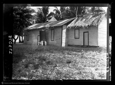 http://lbry-web-002.amnh.org/san/to_upload/Beck-PapuaNewGuinea/W-4x5-negs/273078.jpg