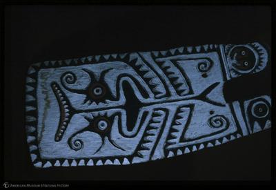 http://lbry-web-002.amnh.org/san/35mm/K10009.jpg