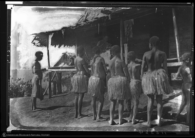 http://lbry-web-002.amnh.org/san/to_upload/Beck-PapuaNewGuinea/NG-5x7-negs/115564.jpg