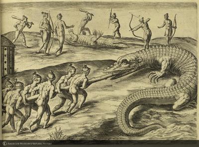 http://lbry-web-002.amnh.org/san/naturalhistories/b11477805_5.jpg