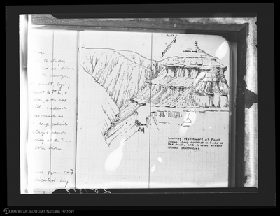 http://lbry-web-002.amnh.org/san/to_upload/asiaticexpedition/251819.jpg
