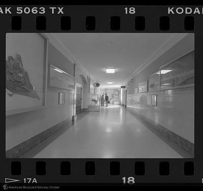 http://lbry-web-002.amnh.org/san/to_upload/35mm_halls_new/600807_18.jpg