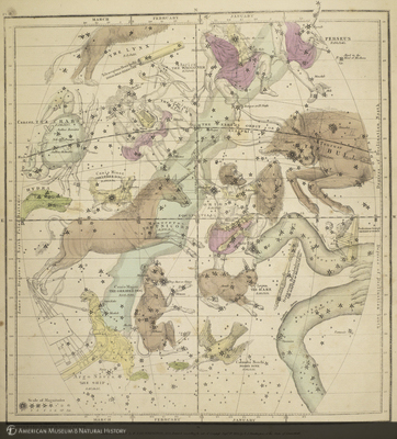 http://lbry-web-002.amnh.org/san/naturalhistories/b11477623_3.jpg